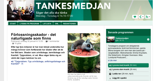 Skärmavbild 2013-02-01 kl. 10.55.44