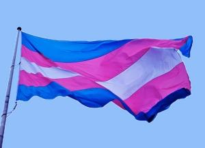 Bild på den blå-rosa-vitrandiga transflaggan.